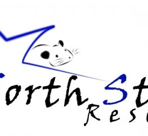 North Star Rescue